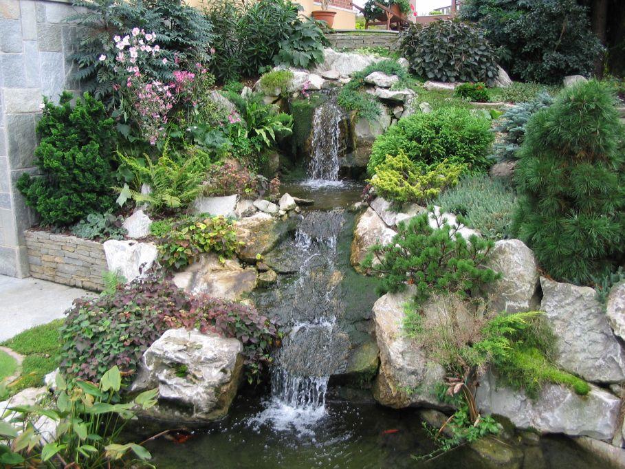 Cascata in giardino paesaggi garden vivaiopaesaggi for Piante da laghetto